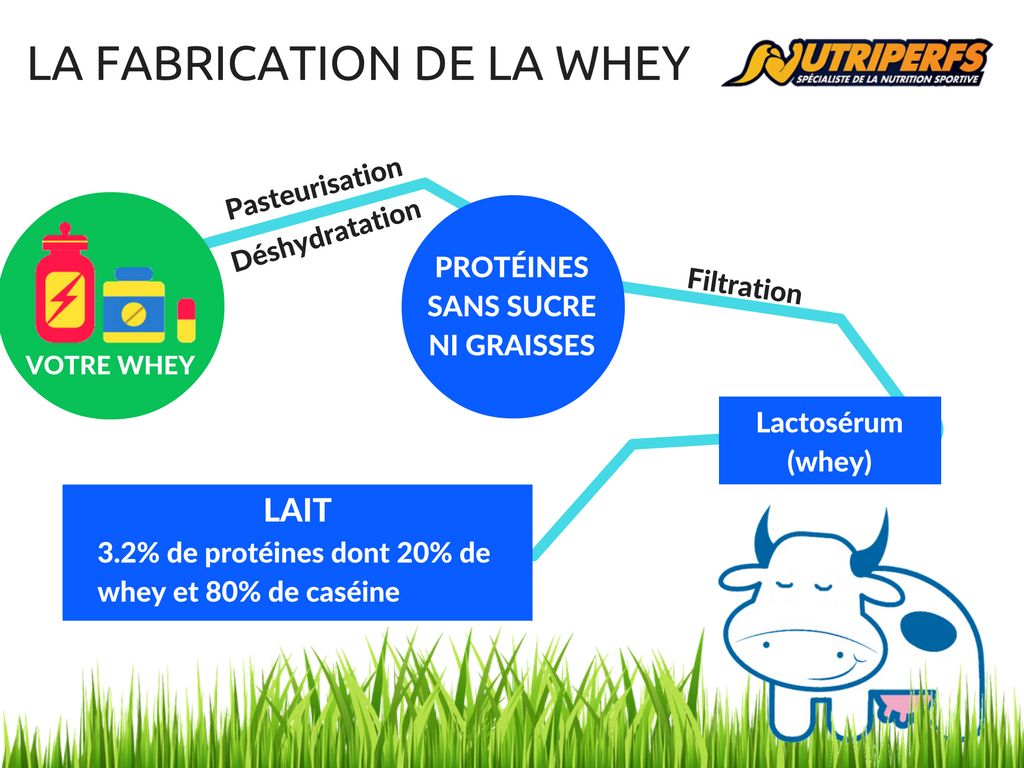 complement-alimentaire-proteine-fabrication-whey