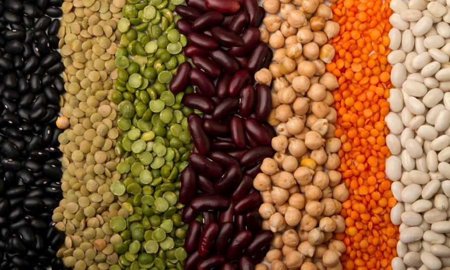 proteine-pas-cher-conseils-nutriperfs-proteines-vegetales