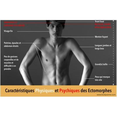 Ectomorphe: transformez votre physique avec Nutriperfs!